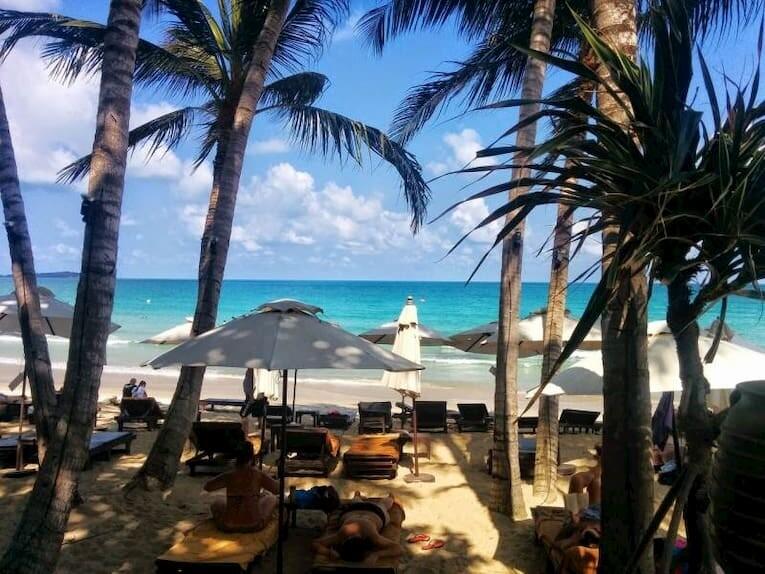 Una de las playas de Koh Samui, con hamacas y palmeras.