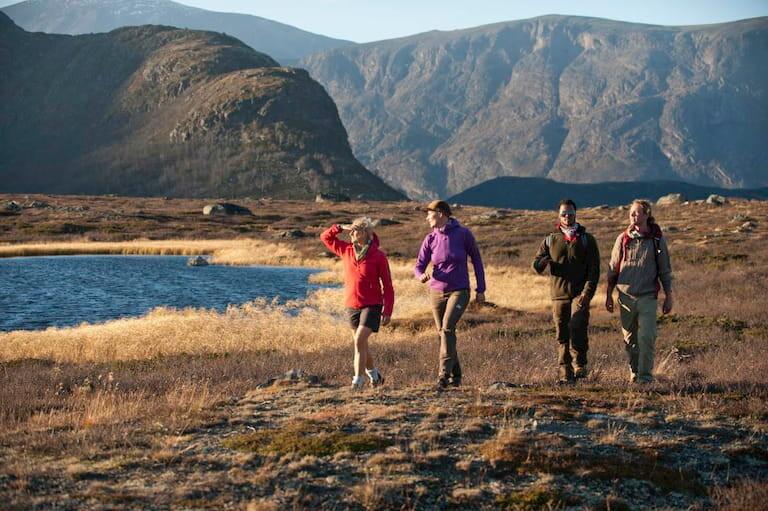 4 personas haciendo senderismo
