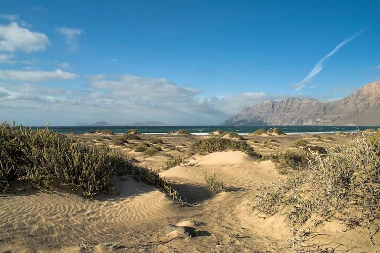 Dunas de la playa de Famara