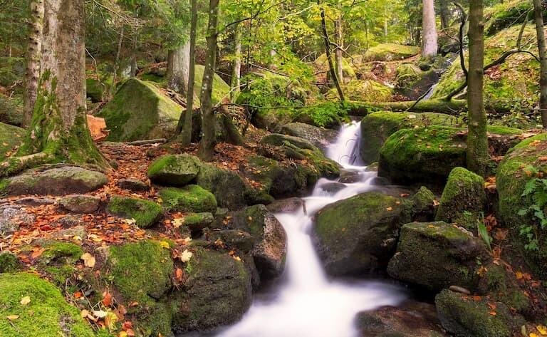 Las Cascadas de Gertelsbacher, en medio del bosque de la Selva Negra
