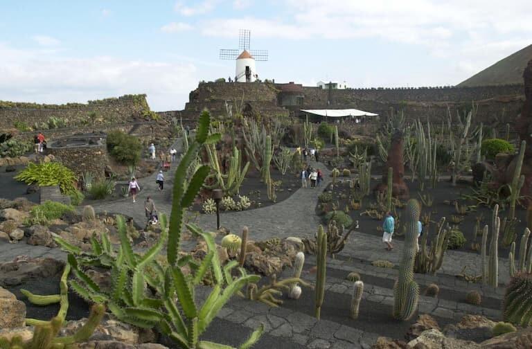 El molino del Jardín de Cactus.