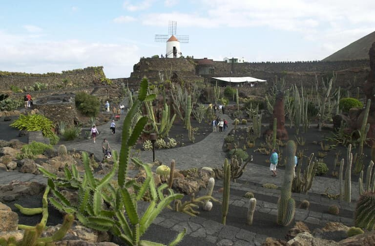El Jardín de Cactus.