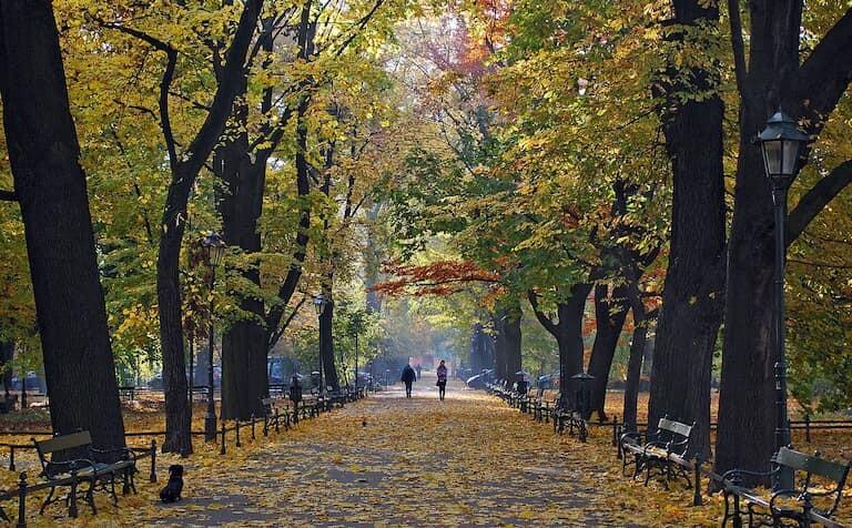 El parque Planty de Cracovia en otoño.