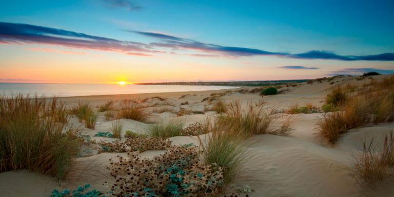 La Playa Sampieri con sus dunas doradas al atardecer.