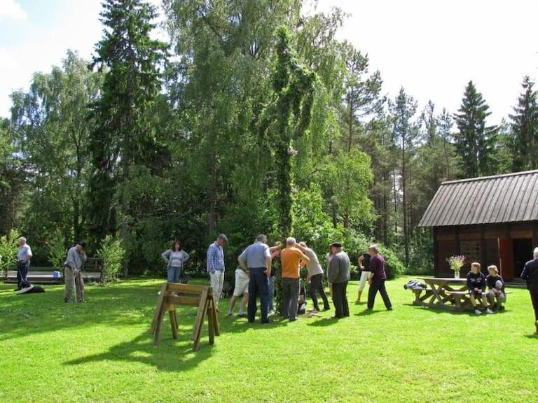 Varias personas levantando el palo de San Juan en Suecia