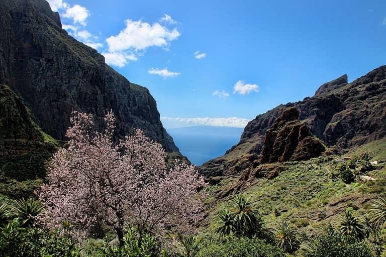Impresionantes vistas en el descenso del barranco de Masca.