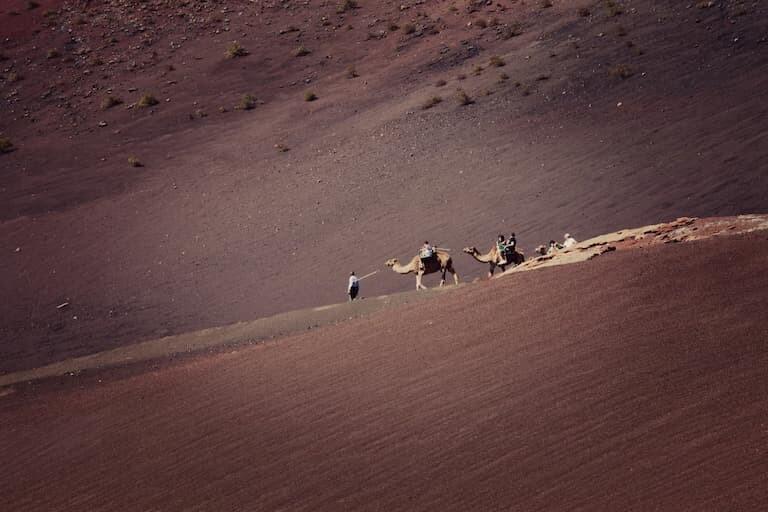 Paseo en Camello por Timanfaya.